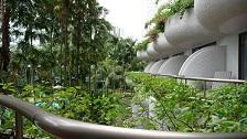 Singapore - May 2009